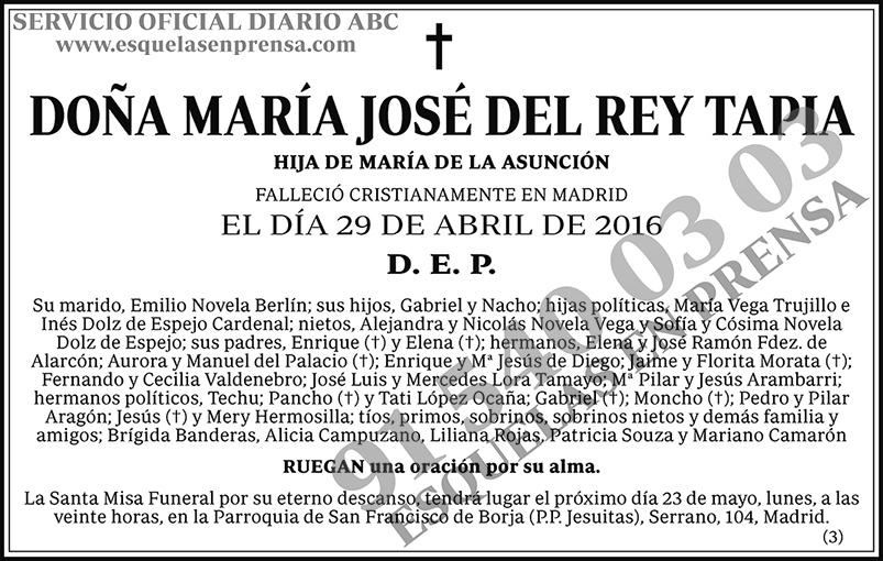 María José del Rey Tapia